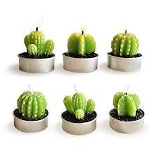 cactus home decor amazon com cactus candles luvu mini cute tealight candles for