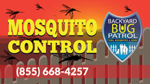 mosquito control woodbridge va backyard bug patr youtube