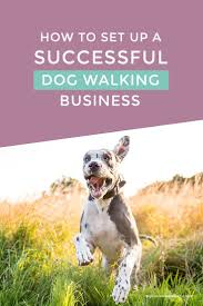 Backyard Business Ideas by Best 25 Dog Business Ideas Ideas On Pinterest Dog Boarding Pet