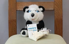 how to celebrate your teddy bear u0027s birthday 11 steps