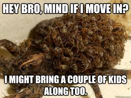 Nope Meme - hey bro mind if i move in i might bring a couple of kids along too