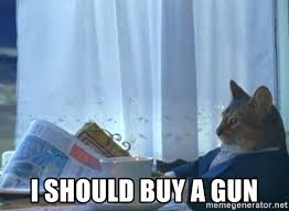 Cat Buy A Boat Meme - i should buy a gun cat boat meme generator