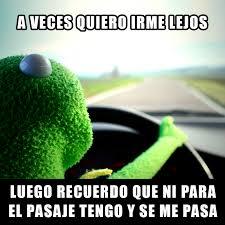Rana Rene Memes - memes de la rana rene imagenes chistosas