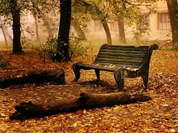 Background With Chair Green Nature Hd Wallpapers Page 0 Walldiskpaper
