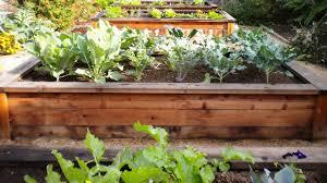 Urban Home Victoria Gardens - the urban garden company home facebook
