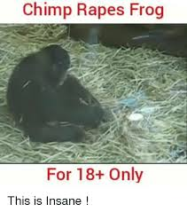 Chimp Meme - 25 best memes about chimp chimp memes