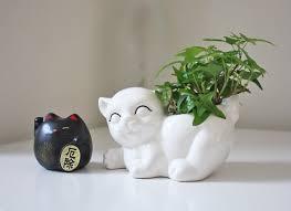 cute plant pots ideas u2013 kao ani com
