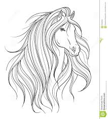 horse head in line art style tattoo art isolated element stock