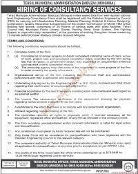 tehsil muncipal administration babuzai jobs the news jobs ads 23