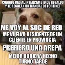 Memes De Chihuahua - meme creator chihuahua psicologia meme generator at memecreator org