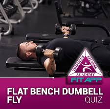 Flat Bench Db Fly Index Of Quizical