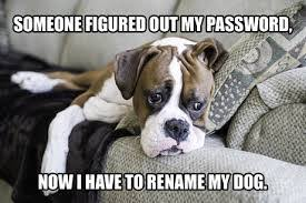 Password Meme - you shall not use the same pass word again password security