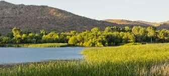 patagonia lake state park arizona