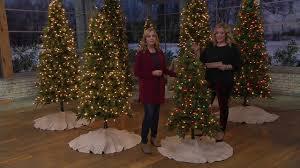 bethlehem lights prelit sitka spruce tree on qvc