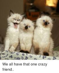 Crazy Friends Meme - 44er be we all have that one crazy friend crazy meme on esmemes com