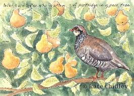 the twelve days of book kate chidley