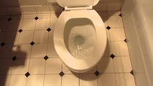 Eljer Patriot Toilet 1966 Kohler Bolton Toilet Youtube
