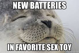 Meme Sex Toy - new batteries in favorite sex toy satisfied seal meme generator