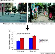 Change Blindness Task The Influence Of Culture Holistic Versus Analytic Perception