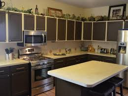 Kitchen Cabinet Doors Painting Ideas Attractive Ideas Yoben Shocking Epic Motor Great Shocking Epic