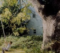 willow trees burnt ridge nursery orchards
