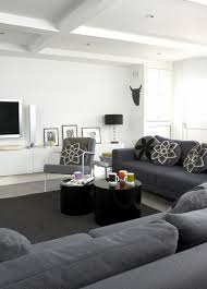 Gray ContemporaryModern Family Room Living Room Design Ideas - Modern family room