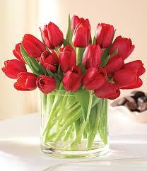 Girls Favourite Flowers - best 25 red tulips ideas on pinterest red flowers purple