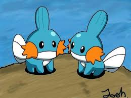 mudkip in their natural habitat pokémon amino