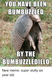Armadillo Meme - 25 best memes about funny new memes funny new memes
