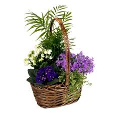 Flowers For Delivery Flower Baskets Of Flowers By Flowers Made Easy Flowers For Delivery