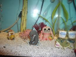 diy geeky fish tank decor offbeat home u0026 life