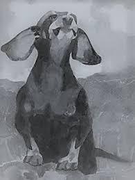 bichon frise z hter hessen tom homewood art animalier pinterest toms and paintings