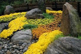 On The Rocks Garden Grove Garden Activesolar Me