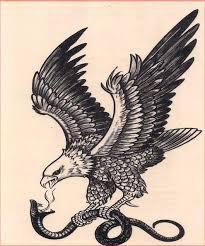 eagle tattoo charlotte nc black and white eagle killing a snake tattoo design old school