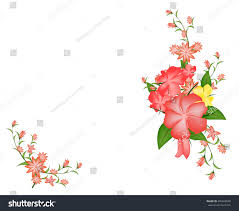 set floral vector flower blooming flowersflower stock vector