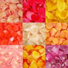 flowers in bulk choose your colors flowers wholesale bulk flowers fiftyflowers