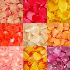 bulk flowers choose your colors flowers wholesale bulk flowers fiftyflowers