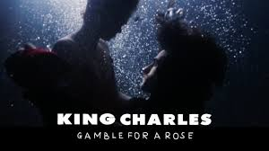 king charles gamble for a rose official music video youtube