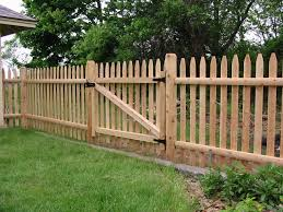 rummy backyard fence ideas along with young brown mapple materials