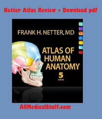 Human Physiology And Anatomy Book Human Anatomy And Physiology Book Free Download Pdf At Best