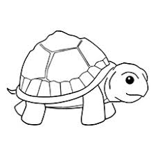 Top 20 Free Printable Turtle Coloring Pages Online Small Turtles Small Coloring Pages