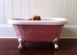 diamond bathtub luxury for children and pets the diamond bathtub pursuitist