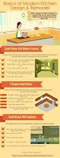 basics of modern kitchendesign and remodel kitchen infographics