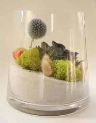 long ago and far away terrarium vibrant moss terrarium indoor