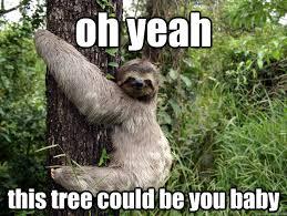 Sloth Meme Pictures - sinister sloth memes quickmeme