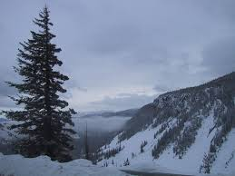 file mountain overlook with pine tree snow and clouds jpg