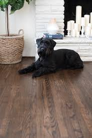 Laminate Flooring For Dogs How To Refinish Hardwood Floors Like A Pro Room For Tuesday