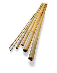 bamboo poles bamboo stakes bamboo sticks gardeners com