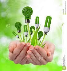 eco energy light bulbs in hands stock photo image 63140986