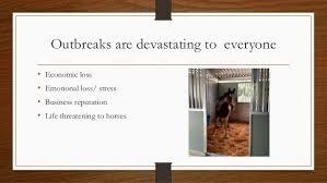 The Health Barn Maintaining The Health Of Your Barn